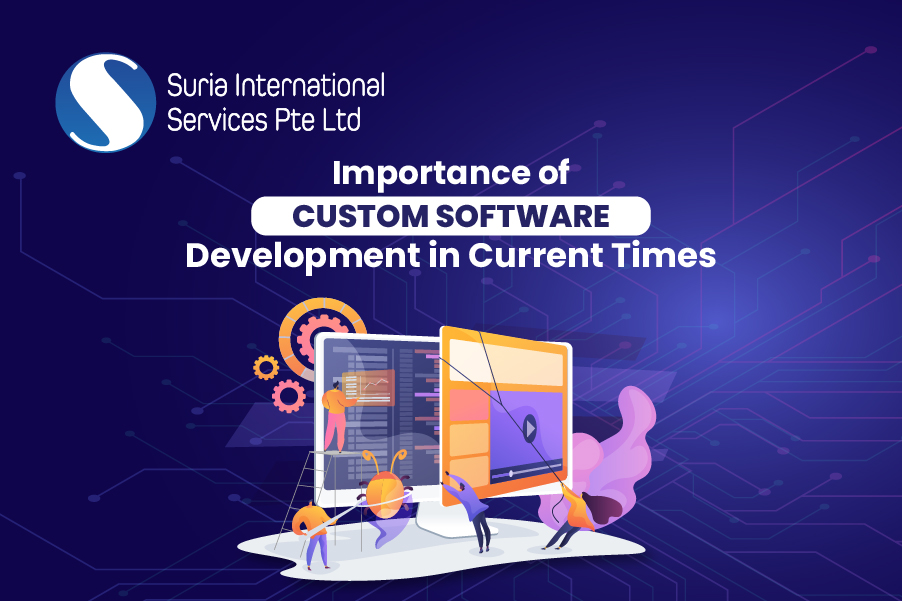 Importance of Custom Software Development in Current Times